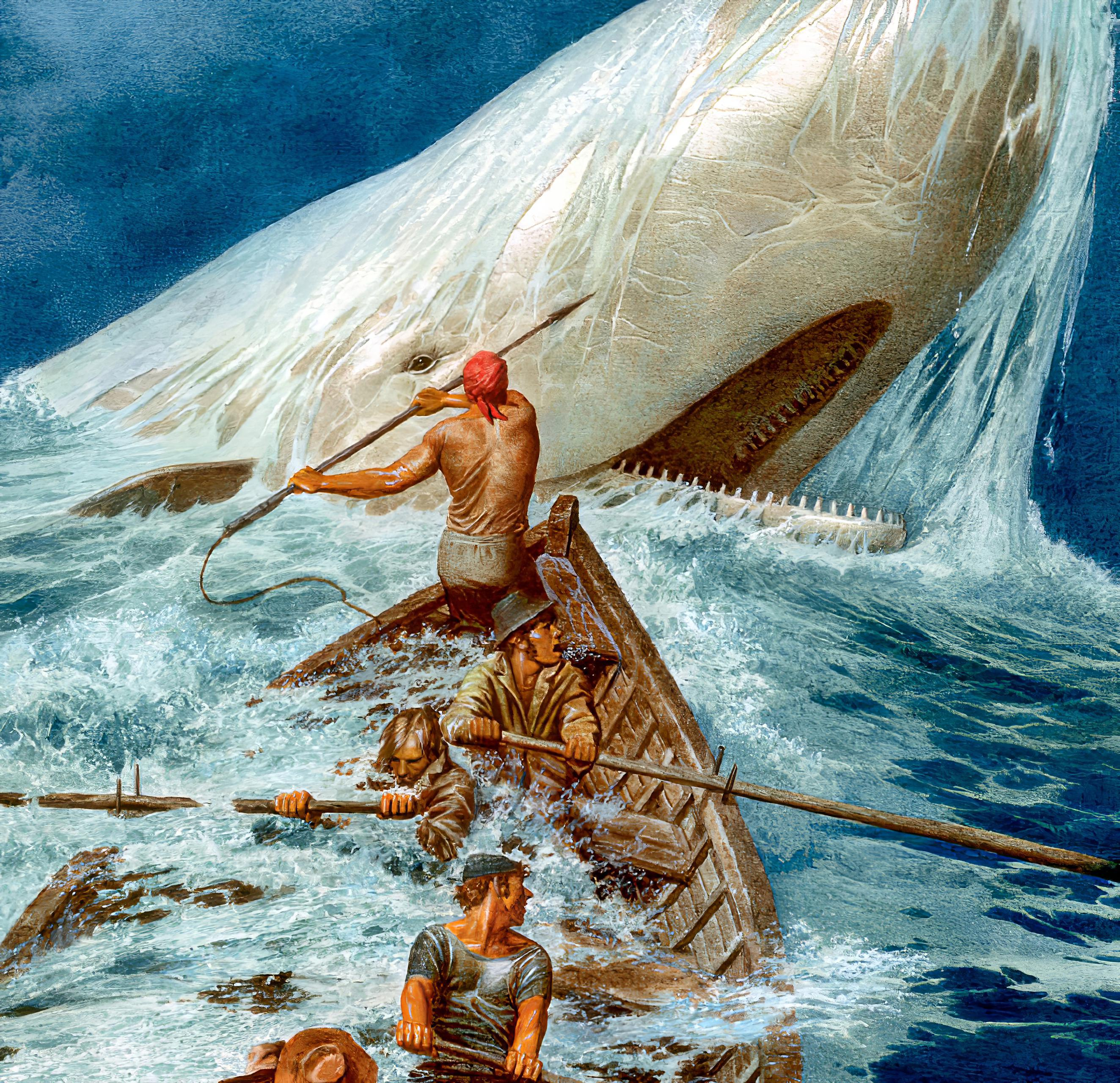Book Moby Dick Or The Whale in Italian